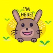 snapchat-website